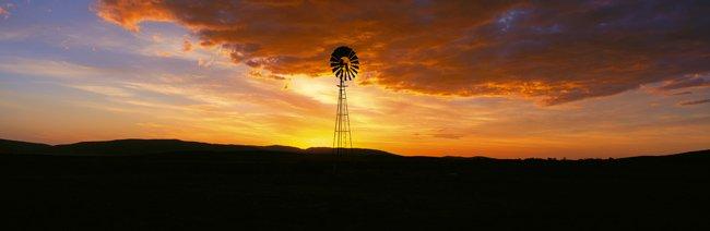 Windmills-01bog