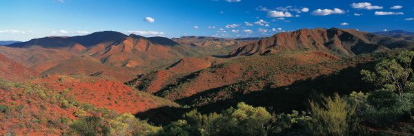 ARKAROOLA – Northern Flinders Ranges – South Australia Pete Dobre Book Page 1