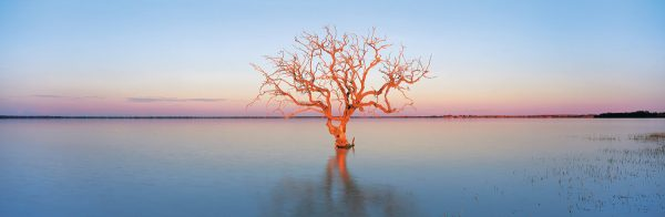 Cooper Creek & Coongie Lakes in Outback Australia Book by famous Australian photographer Pete Dobre - Page 42
